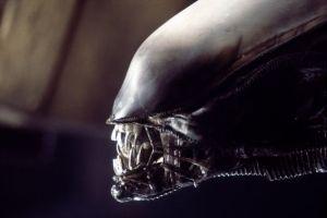 alien-smaller